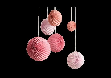 Lampions rosé